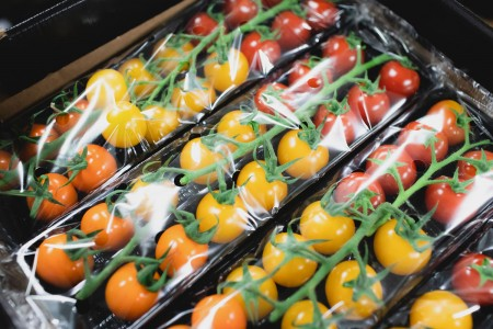 An unique collaboration for the very best quality of tomatoes