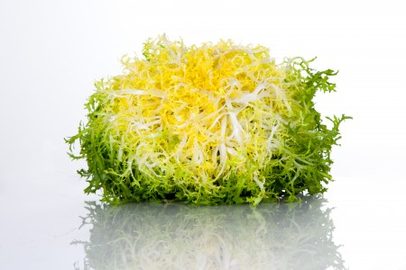 You (probably) did not know this about yellow frisée - curly endive